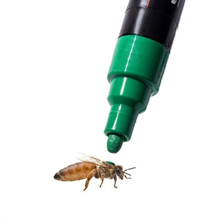 Bee Queen Marking Pen 3