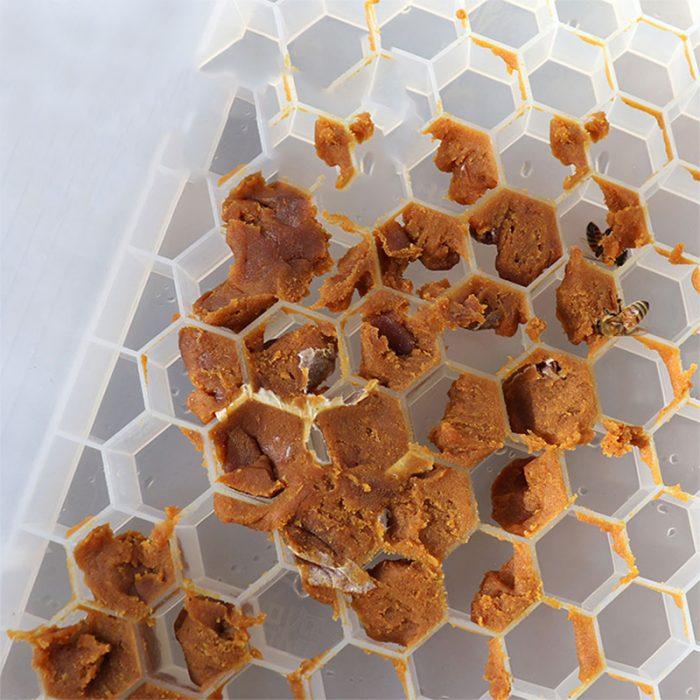 Beehive-Pollen-bee-Feeder-5